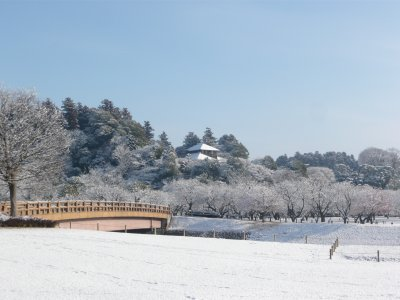 偕楽園の雪.jpg