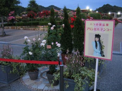花フェスタ012.jpg