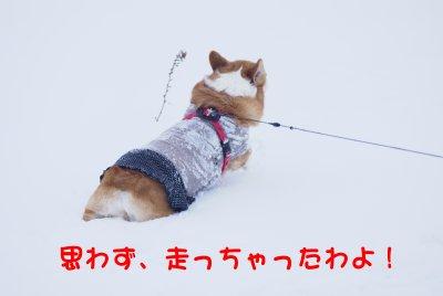 雪遊び1.jpg