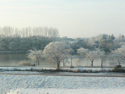 千波湖も雪景色.jpg