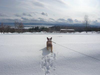 猪苗代湖を眺める.jpg