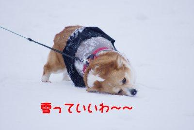 雪遊び2.jpg